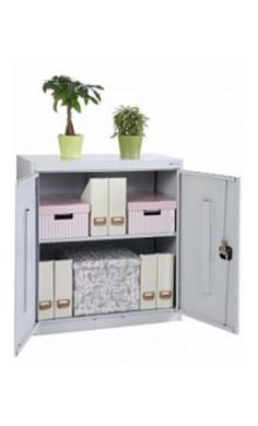 Металлические архивные шкафы ALR-8810 купить недорого